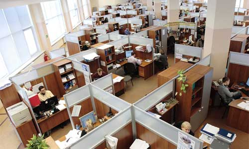 9 Ways Companies Can Go Green office cubicle - 9 Ways Companies Can Go Green