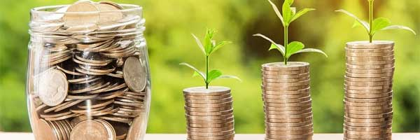 5 Reasons Why Online Casinos Are Environmentally Friendly coins leaf - 5 Ways Online Casinos Can Contribute Positively to The Environment